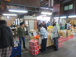 11月10日土曜日市場開放フェアが開催されました