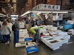 11月2日土曜日市場開放フェアが開催されました