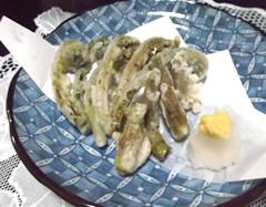 山菜タラの芽とこごみの天麩羅